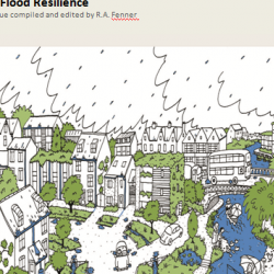 Perspectives on Urban Flood Resilience - Blog